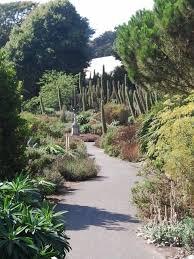 Ventnor Botanic Gardens Isle Of Wight 2 Ventnor Botanic Gardens Pennyburnfield