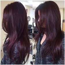 brown plum hair color best 25 plum brown hair ideas on pinterest dark plum brown hair