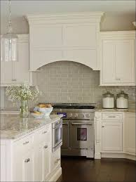 kitchen white kitchen appliances blue backsplash tile modern