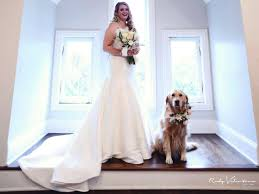my toxic baby documentary watch bride includes beloved dog as flower in her wedding people com
