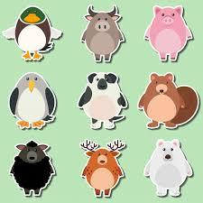 pig cartoon vectors photos psd files free download