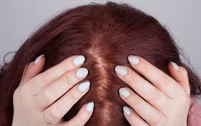 Best Hair Color To Hide Gray How To Henna Your Hair Red 14 Steps With Pictures Wikihow