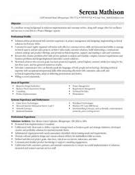 Technical Project Manager Resume Sample by Functional Resume Template Word Http Www Resumecareer Info