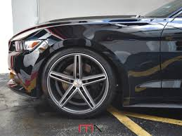 Black 5 0 Mustang Mustang 5 0 Black Miami Autosport Technik