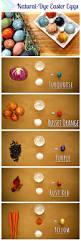 Decorating Easter Eggs Dye by Hgtv Crafternoon Diy Natural Dye Easter Eggs Http Blog Hgtv