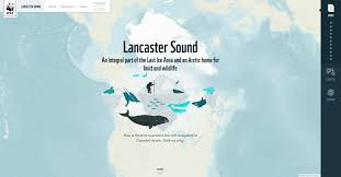 Sound Map Wwf Launches New Way To Explore Key Part Of Last Ice Area Wwf