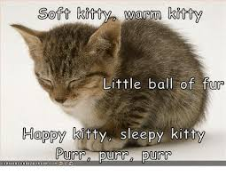 Sleepy Cat Meme - 25 best memes about sleepy kitty sleepy kitty memes