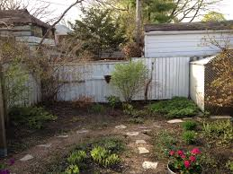 removing bushes from flowerbeds toronto master gardeners