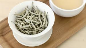 Teh Putih mengenal teh putih white tea pt samindo lestari