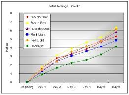 how does light affect plant growth science fair project phototropism