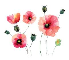 Poppy Home Decor Wallpops Home Decor Line Watercolor Poppies Wall Decal Reviews