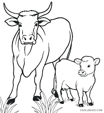 coloring pages printable cow pictures printable pictures of