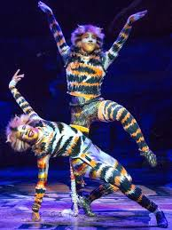 best 25 cats musical ideas on cats broadway show