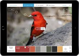 pinterest and sherwin williams colorsnap visualizer color matching app