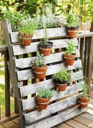 Small Garden Plant Ideas Small Garden Plants Cullmandc