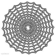 A Ravine Trap Door Spider Butterflies Moths Dragonflies And Spider Web Coloring Page