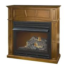 free standing vent free gas fireplace cpmpublishingcom