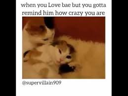 I Love You Bae Meme - when you love bae but you gotta remind him how crazy you are youtube