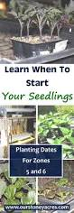 How To Plant A Garden In Your Backyard 615 Best Images About Gardening On Pinterest Gardens Grow And
