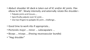 How To Palpate Subscapularis Practice Sessions 1 Quick Postural Assessment Of Shoulder Girdle