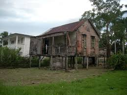 abandoned in belize c a this would make a really cool tree house