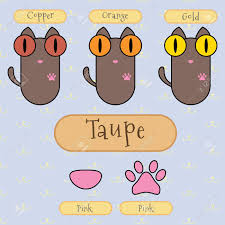 infographic show detail of taupe color cat eye color nose color