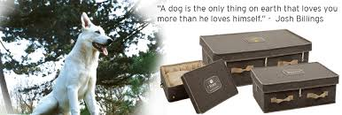 dog caskets pets remembered usa giving your pets the warmth they gave you