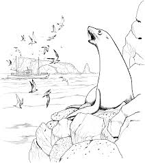 free coloring pages cute sea lion 4084 bestofcoloring