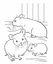 pet coloring family hamsters cage