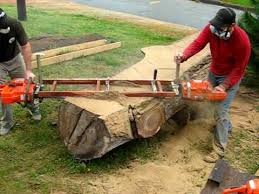 Slabcutting Tree Trunk For Handcrafted Furniture Tree Furniture - Tree furniture