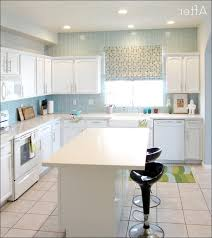 How To Seal Painted Kitchen Cabinets Kitchen Shocking Sealing Painted Kitchen Cabinets Photo