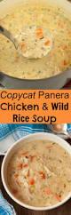 best 25 simple food chain ideas on pinterest simple food web