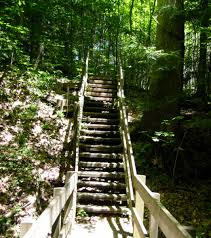 Clifty Falls State Park Map by 10 Best Hikes In Indiana