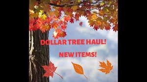 dollar tree haul new items september 25 2017