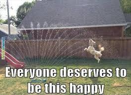 Be Happy Memes - meme boomsbeat