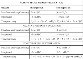 Types Of Ventilators Basic Terms And Concepts Of Mechanical Ventilation Thoracic Key