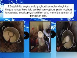 cara membuat yoghurt yang kental biologi cara membuat yoghurt alami