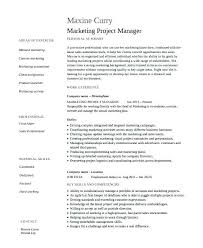 professional marketing resume sales and marketing resume exles