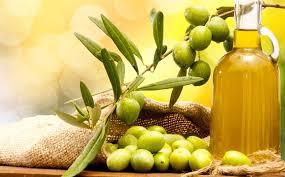 Minyak Zaitun Untuk Memanjangkan Rambut berbagai manfaat minyak zaitun bagi kesehatan dan kecantikan wajib