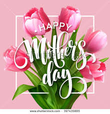 mothers day flowers mothers day flowers stock images royalty free images vectors