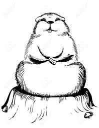 groundhog images u0026 stock pictures royalty free groundhog photos