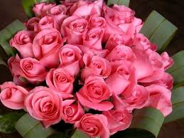 big bouquet of roses pink roses big bouquet picture pink graphics99