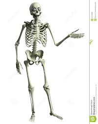 3d cartoon skeleton stock photos image 35143683