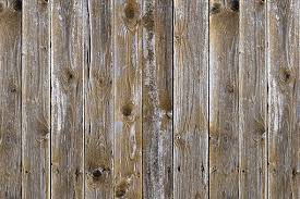 wood free pictures on pixabay