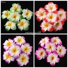 plumeria flowers wholesale plumeria flowers frangipani wedding bouquet