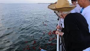 scattering ashes at sea ta bay burial at sea ta bay