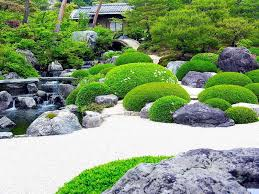 garden and lawn the variety of japanese garden plants shrubs
