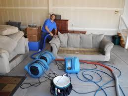 alpine professional carpet care utah upholstery cleaning