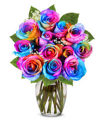 roses flowers one dozen rainbow roses at from you flowers