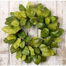magnolia leaf wreath 26 inch green magnolia leaf wreath arrangement rc willey